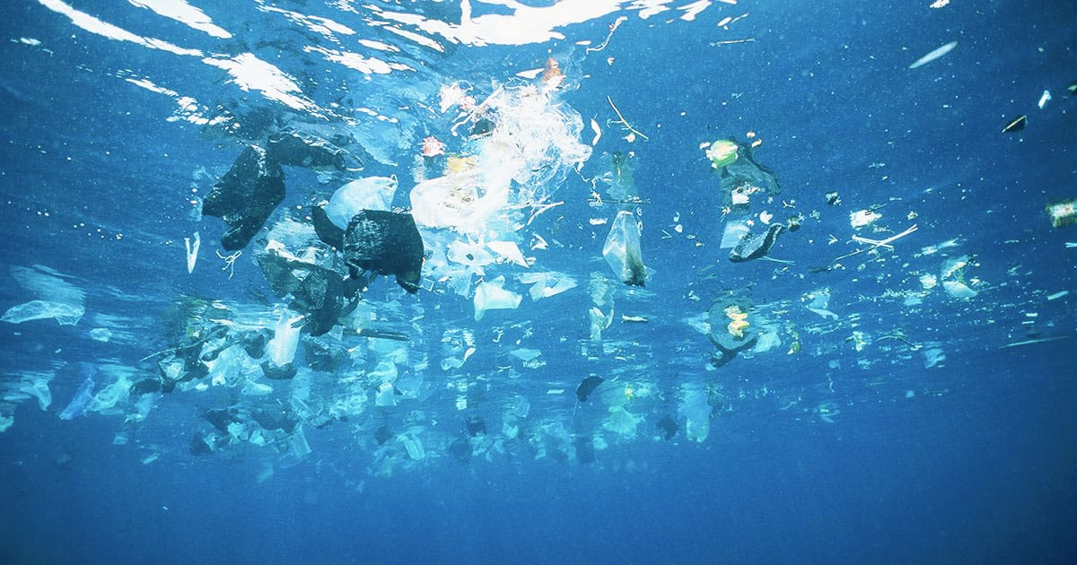 Plastic-Eating Enzyme Accidentally Discovered
