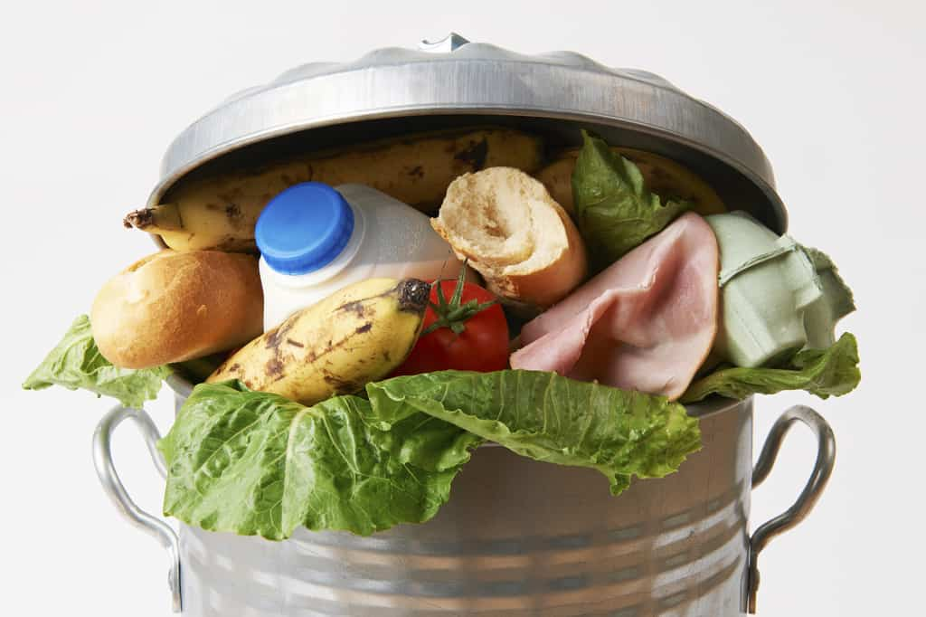 Meal Prep Mate: The App Aiming to Eliminate Food Waste | Virtuul News