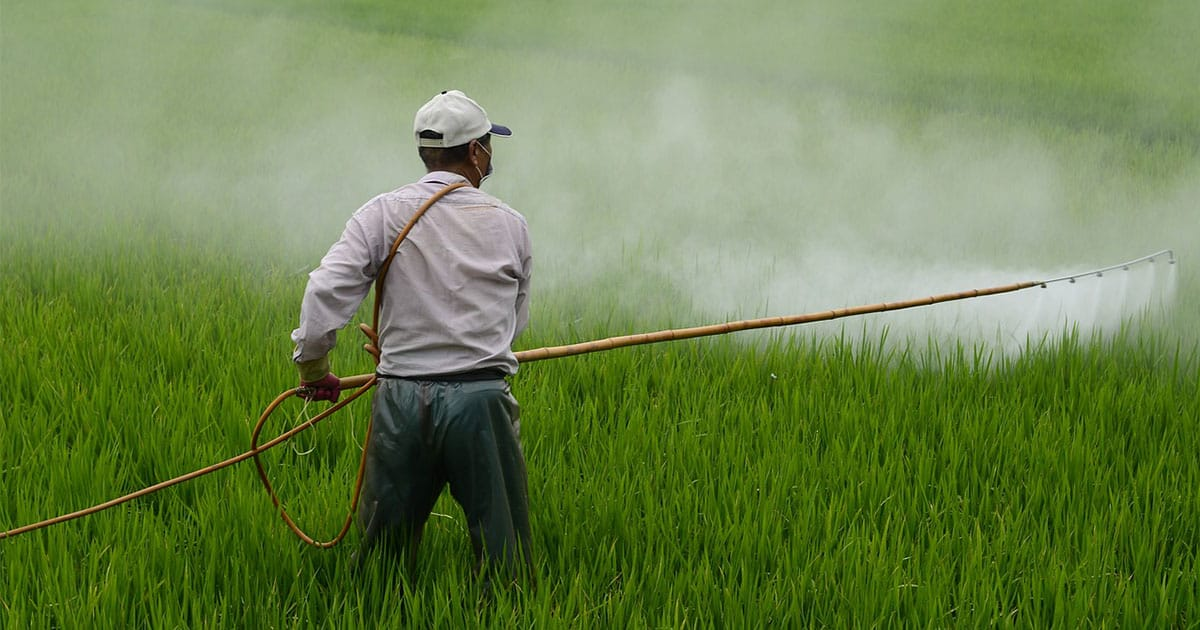 Pesticides Are Everywhere: But Do We Really Need Them?