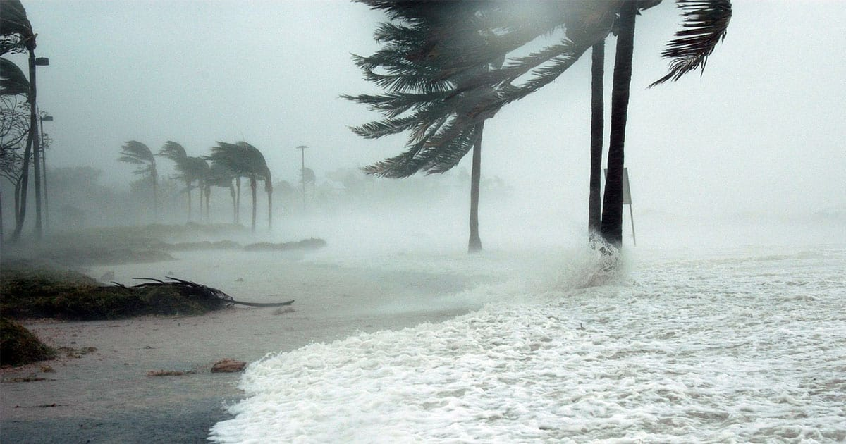Breaking Down the Planet's Cases of Extreme Weather | Virtuul News