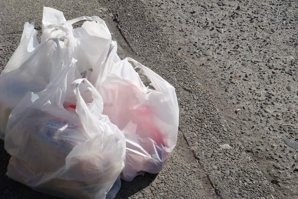 what do plastic bans mean for the environment