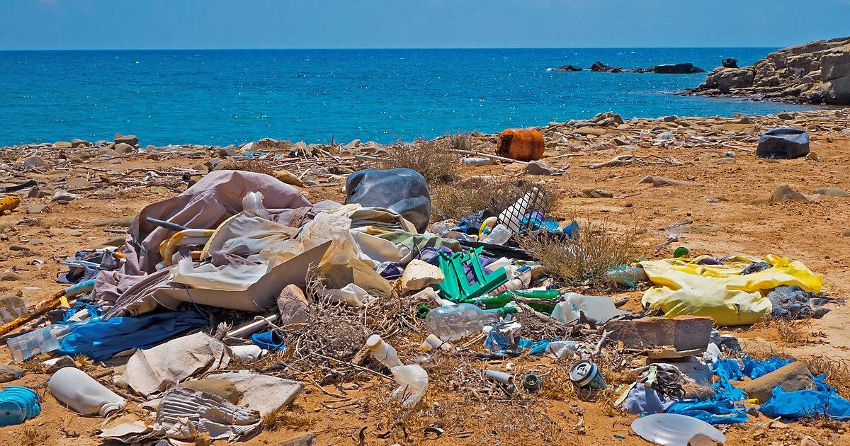 What Do Plastic Bans Mean for the Environment?